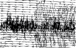 A sample seismograph reading - a potential resultant image produced by the hydrographs.