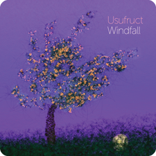Windfall_225